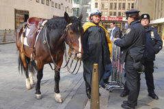 NYPD Mounted Division royalty free stock photography