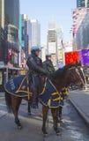 NYPD-politiemannen op horseback klaar om publiek op Times Square tijdens de week van Super Bowl XLVIII in Manhattan te beschermen Royalty-vrije Stock Afbeeldingen