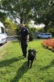 NYPD sprzeciwiają się terroryzmu biura K-9 funkcjonariusza policji i K-9 psa providing ochronę przy Krajowym tenisa centrum podcz Zdjęcia Stock