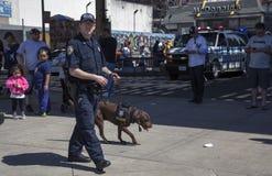 NYPD terroryzmu biura K-9 psa rozmowa podczas dnia otwarcia Ya Fotografia Royalty Free