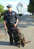 NYPD transit bureau K-9 police officer and K-9 dog providing security at National Tennis Center Royalty Free Stock Photo