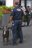NYPD transit bureau K-9 police officers and Belgian Shepherd K-9 Sam  providing security at National Tennis Center during US Open Stock Images