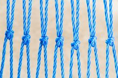 Nyron ropes with knot Stock Photography