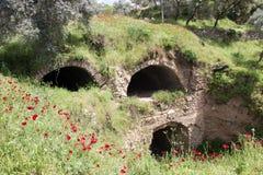 Nysa古城在春天, Aydin,土耳其 库存图片