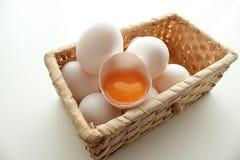 Nytt ägg Arkivfoto