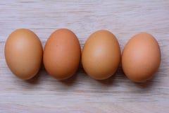 Nytt ägg på träbakgrund Äggbakgrund Royaltyfria Foton