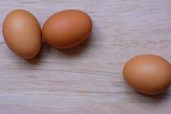 Nytt ägg på träbakgrund Äggbakgrund Royaltyfria Bilder