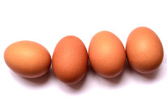 Nytt ägg på vit bakgrund isoleted ägg Fotografering för Bildbyråer