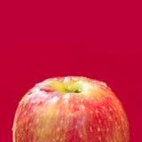 Nytt äpple Royaltyfri Fotografi