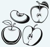Nytt äpple med bladet och skivan Royaltyfria Bilder