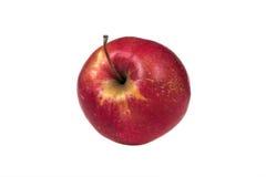 Nytt äpple på en isolerad bakgrund Arkivfoto