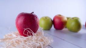 Nytt äpple, sunt näringbegrepp Idé för mellanmål för frukt sund bra alltid äpple - grön red arkivbild