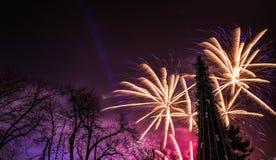 Nytt år 2017 för fyrverkerier Fotografering för Bildbyråer