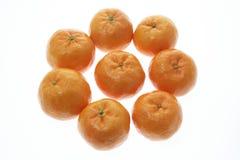 nytt år för kinesiska mandarins Arkivbild