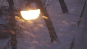 nytt år Sikt av en streetlight under snöfall till och med exponeringsglas i vilket reflekteras den dekorerade nya passande julen stock video