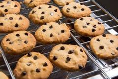 Nytt bakade choklade kakor på att kyla kuggen Arkivfoton