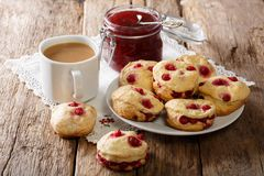 Nytt bakade engelska sconeser med bäret, te med mjölkar och sitter fast c royaltyfria foton