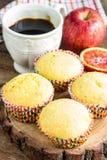 Nytt bakade muffin för breakfasr Royaltyfri Bild