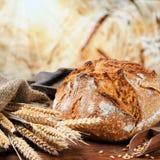 Nytt bakat traditionellt bröd arkivbild