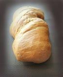 Nytt bakat traditionellt bröd Royaltyfria Bilder