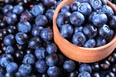 Nytt blåbär i en träbunkenärbild på en blå träbakgrund arkivbild