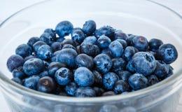 Nytt blåbär i platta royaltyfri bild