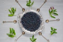 Nytt blåbär på tappningsilverplattan som är klar att äta på den gråa kökbakgrunden med kopieringsutrymme sund begreppsmat arkivbild