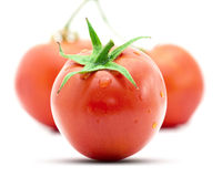 Nytt blöta tomatfrukter Arkivbild