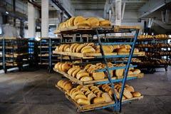 Nytt bröd på en hylla i ett bageri Arkivfoto