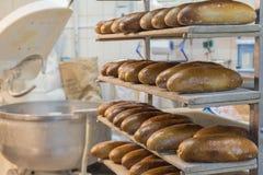 Nytt bröd på ett bageri Arkivfoto