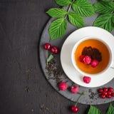 Nytt bryggat te och mogna bär på en svart bakgrund royaltyfria foton