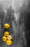 Nytt citronfoto Royaltyfria Foton