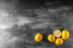 Nytt citronfoto Arkivfoton