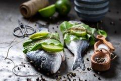 Nytt fångad havsbraxen med limefrukt- och pepparrotsidor arkivfoto