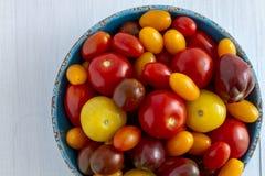 Nytt från trädgårds- tomater i bunke Arkivbild