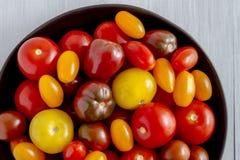 Nytt från trädgårds- tomater i bunke Royaltyfri Bild