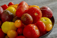 Nytt från trädgårds- tomater i bunke Arkivbilder