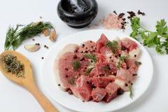 Nytt griskött på en stor platta, kryddor, kryddiga örter royaltyfri bild