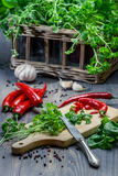 Nytt högg av kryddor och örtar royaltyfria foton