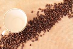 Nytt kaffe Royaltyfria Bilder