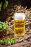 Nytt kallt öl med ett stort skum arkivbilder