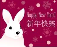 nytt kaninår för hälsningar Arkivfoto