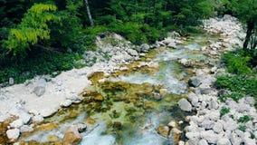 Nytt klart vatten i en bergflod i vaggar i skogen stock video