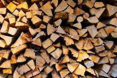 Nytt klippt och staplat vedträ i europeisk skog royaltyfri foto