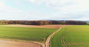 Nytt kultiverat jordbruks- fält - GMO frigör livsmedelsproduktion arkivfilmer