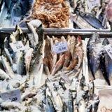 Nytt kyla fisken på is på gatan marknadsför arkivfoto