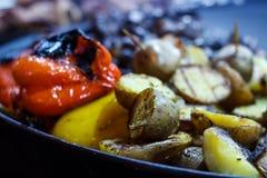 Nytt lagade mat grillade grönsaker, tomater, champinjoner, aubergine Royaltyfri Bild