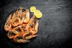 Nytt lagade mat räkor på en platta med skivor av citronen arkivfoton