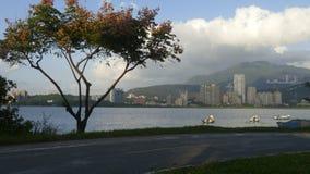 Nytt landskap för väg för cykel för flodstrand för ` s för Taipei stadsfolk, Taiwa Arkivbild