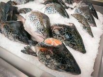 Nytt laxhuvud på is i fiskmarknad arkivfoto